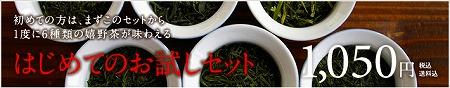 sshin otameshi.jpg